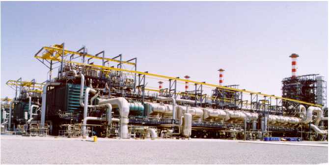 Example of Plant Project